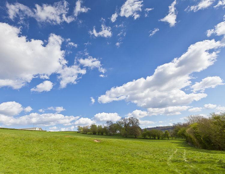 Grassland in Market Drayton England